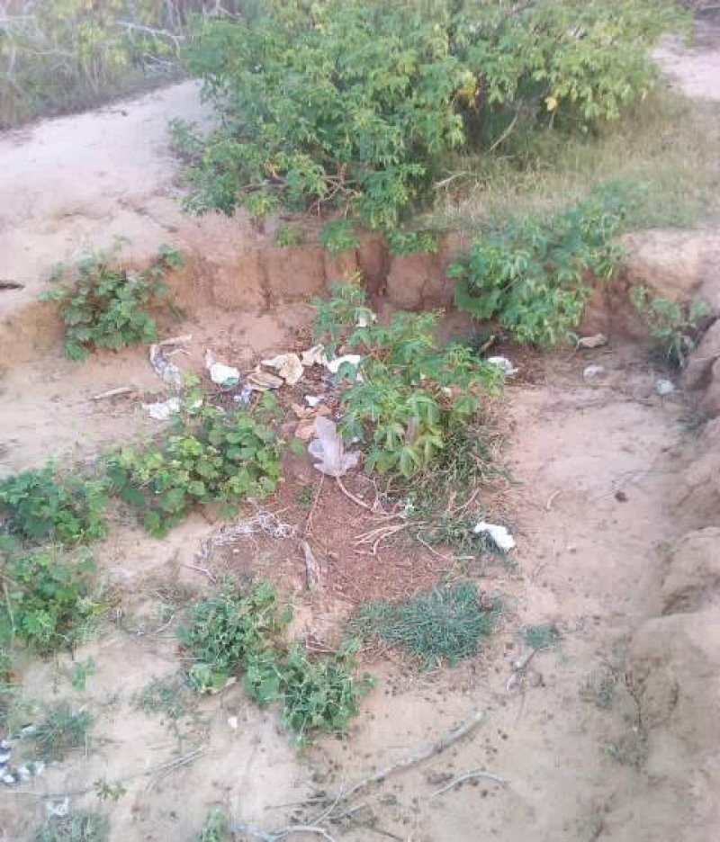 Lack of toilet facilities push us to practice open defecation - Residents of Salom-Madagber community
